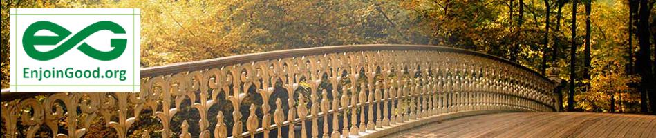 bridges8